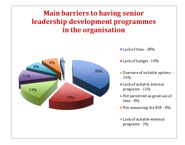 main-barriers-to-having-senior-leadership-pie-chart-png.PNG